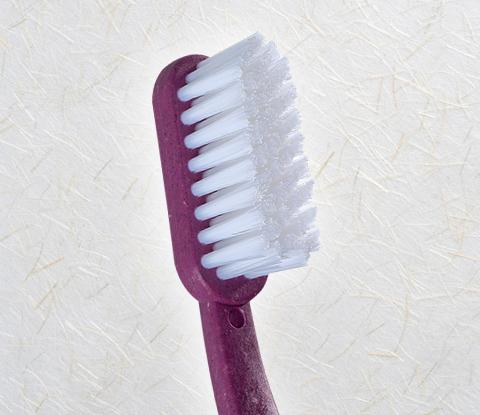 Zahnbürste Borsten