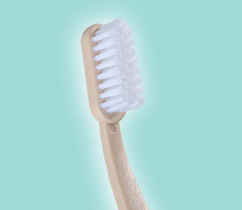 Dental Care Set STANDARD